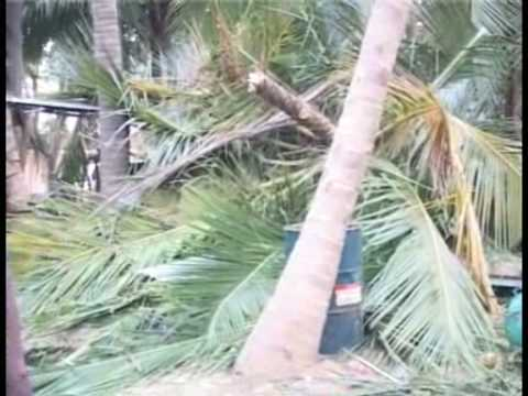 Xxx Mp4 30 Tamil Families Wiped Out In Massive Attack By Sri Lankan Army In Vanni 20090218 3gp Sex