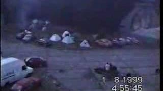 CZECHTEK 1999