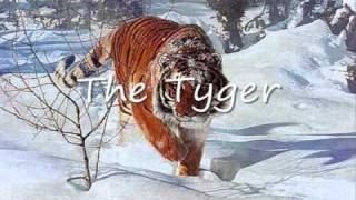 The Tyger and The lamb