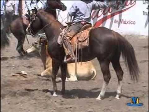 LO MAS TRAJICO DEL JARIPEO POTOSINO EN EL 2009