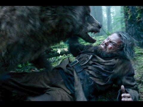 Xxx Mp4 Bear Attack Scene From The Revenant 3gp Sex