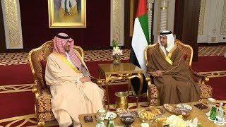 منصور بن زايد يستقبل وزير الداخلية السعودي