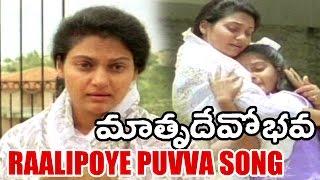 Raalipoye Puvva Song - Nassar Songs - Matru Devo Bhava Movie Songs - Madhavi, Nassar, Y  Vijaya