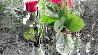 Make a Cool Hanging Flower Lightbulb Vase - Home - Guidecentral