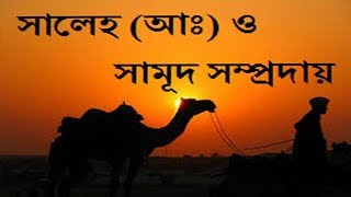 Prophet Saleh and People of Samud in Bangla from Quran (Islamic History)