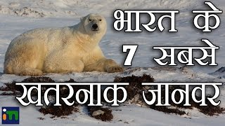 भारत के 7 सबसे खतरनाक जानवर | 7 Most Dangerous Animals Of India | Hindi | Indian Mysteries