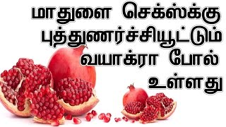 மாதுளை செக்ஸ்க்கு புத்துணர்ச்சியூட்டும் வயாக்ரா போல் உள்ளது | Health Benefits Pomegranate In Tamil