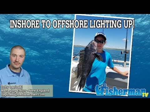 July 26, 2018 New England Fishing Report with Toby Lapinski