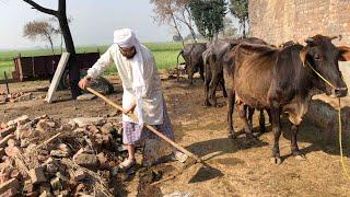 Sialkot Punjab Village Tour Pakistan Aerial View/Glance - Honda Cg 125 Dream 4k