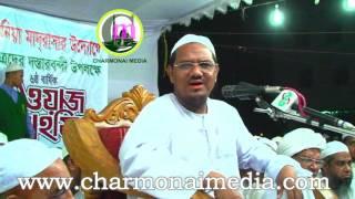 দুই নৌকায় পাঁ দিলে ফাইরা পড়বেন সাবধান ! Bangla Waz By 2017 Mufti Rezaul Karim Peer Saheb Charmonai