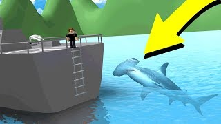 USING THE NEW HAMMERHEAD SHARK! (Roblox Sharkbite)