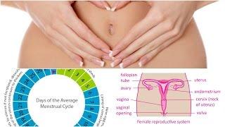 இயற்கையான முறையில் வேகமாக கருத்தரிப்பது எப்படி? 7 வழிகள் | How to Conceive & Get Pregnant Naturally