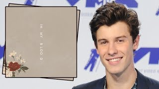 Shawn Mendes Drops New Single