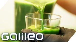 Selbstversuch: 5 Tage Detoxkur | Galileo | ProSieben