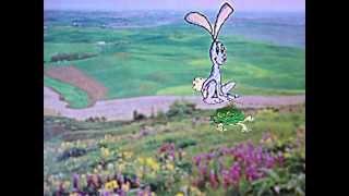 Rabbit And Turtle (Fast And Slow) w. Lyrics