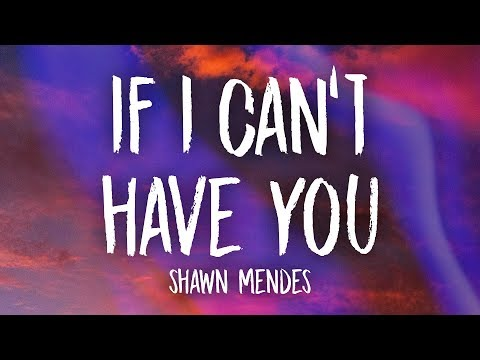 Shawn Mendes If I Can t Have You Lyrics