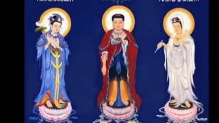Linh Ứng Chú Đại Bi Có Thật - Phật Pháp Nhiệm Màu Hết Bệnh Nan Y