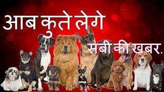 Aaj Tak live Hindi News Today Declaration of Dog License