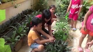(VTC14)_Mô hình vườn rau sạch cho trẻ mầm non