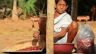 YAYA : An Ethnographic Film on the Gond Tribes of Bastar - TRAILER 1080 HD