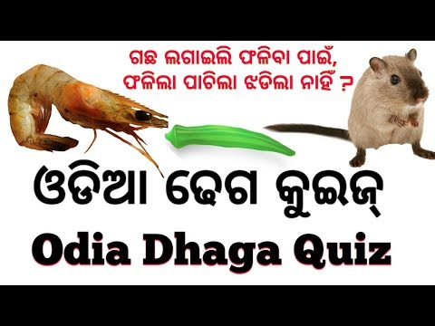 Xxx Mp4 Odia Dhaga Quiz Joke ଓଡିଆ ଢେଗ କୁଇଜ୍ ଓଡିଆ ଢେଗ ଢମାଳି ପ୍ରଶ୍ନ ଉତ୍ତର 3gp Sex