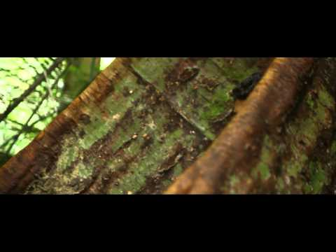Xxx Mp4 Indian Love Story Cinematic Video Vadivelan Amp Sangeetha 3gp Sex