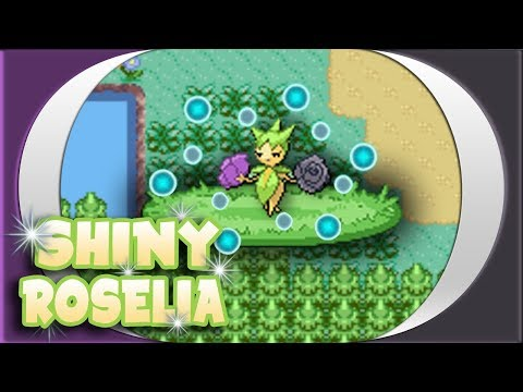 [ISHC] LIVE REACTION! Shiny Roselia after 10,916 REs!!!