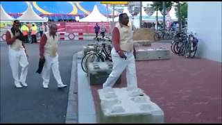 The Trammps @ 40UP Zomerfestival Eindhoven 2017