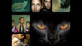 """صبايا الخير - ريهام سعيد  معتقدات أهالي الصعيد """"ان ارواح اولادهم تسكن القطط """""""