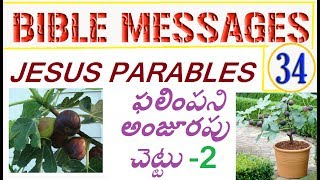 Bible Topic 34 - ఫలింపని అన్జూరపు చెట్టు 2 - The Barren Fig tree / Jesus Parables (Telugu messages)