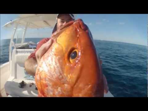 Fishing Jigging Fujairah UAE Red Snapper Tuna Trevally Grouper 2 Dec 2012