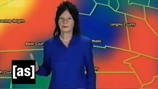 Yesterday's Weather   Check It Out! With Dr. Steve Brule   Adult Swim