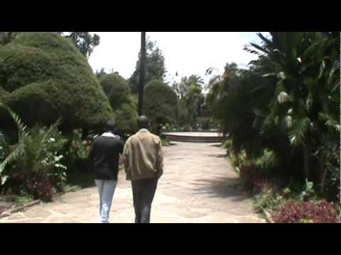 Addis Ababa University Campus