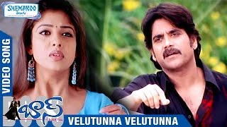 Boss I Love You Telugu Movie Songs | Velutunna Velutunna Full Video Song | Nagarjuna | Nayanthara