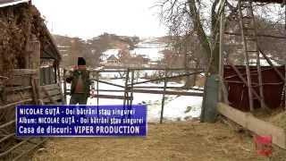 Nicolae Guta - Doi batrani stau singurei