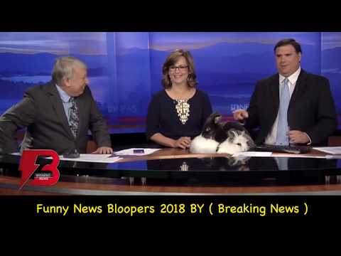 Xxx Mp4 Best News Bloopers 2018 Compilation Latest News Bloopers Breaking News USA Reporters Bloopers 3gp Sex