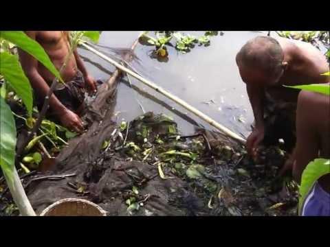 Discover Bangladesh - Village Life