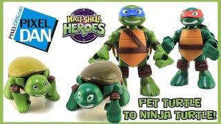 Half-Shell Heroes Pet Turtles to Ninja Turtle Teenage Mutant Ninja Turtles Figures Video Review