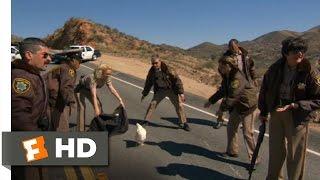 Reno 911!: Miami (2/10) Movie CLIP - Stop, Chicken, Stop! (2007) HD