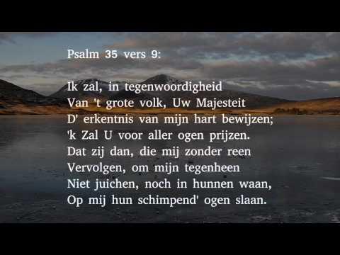 Psalm 35 vers 1, 9 en 13 - Twist met mijn twisters, hemelheer