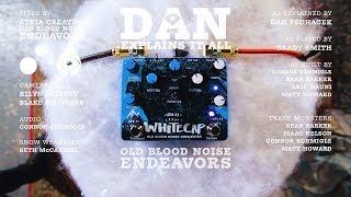 Dan Explains It All - Whitecap Asynchronous Dual Tremolo