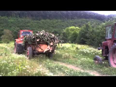 La Padure cu UTB 2013