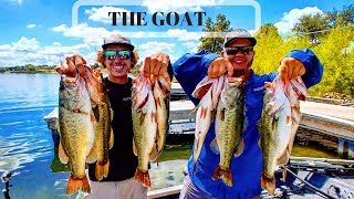 my BEST day of bass FISHING EVER