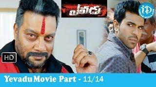 Yevadu Movie Part 11/14 - Ram Charan Teja - Shruti Haasan - Kajal Agarwal