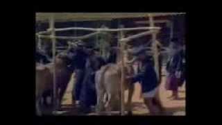 PAK SAKERAH 1982 FULL MOVIE
