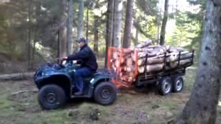Atv Allan wood trailer