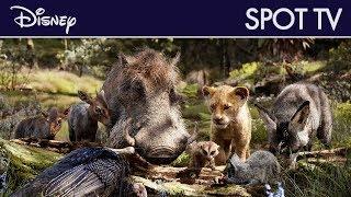 Le Roi Lion (2019) - Spot TV : Timon et Pumbaa | Disney