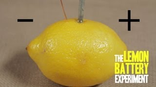 How to Make a Lemon Battery