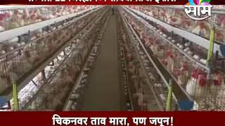 11 Maha districts on bird flu alert