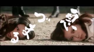 (Japan 1970`s) Pinky Violence Films